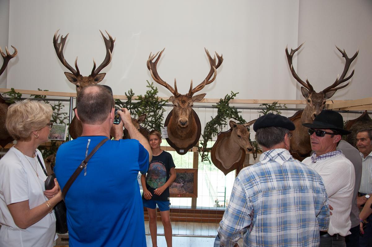 Photographe Tourisme Sur Une Fête De Village En Savoie : Exposition De Trophées De Chasse Par L'ACCA Des Allues : Cerfs