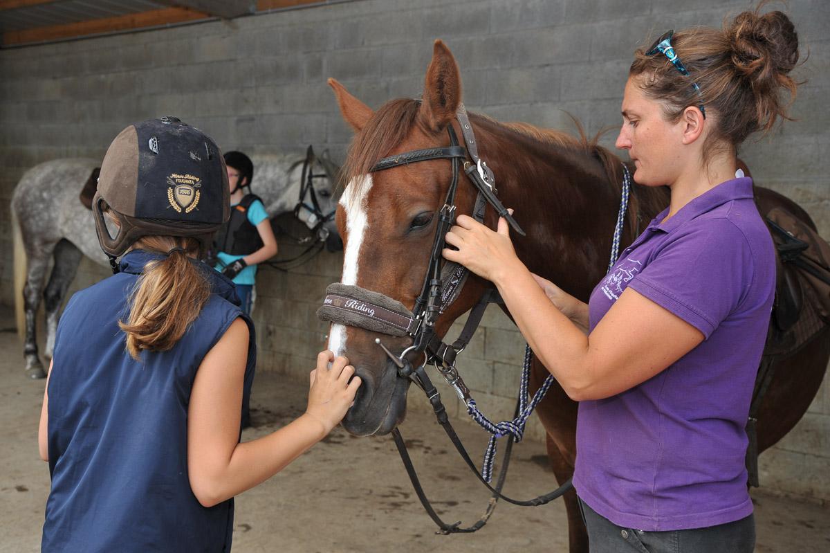 Photographe équin : Shooting Photo Pro à L'Ecole D'Equitation De Peillonnex