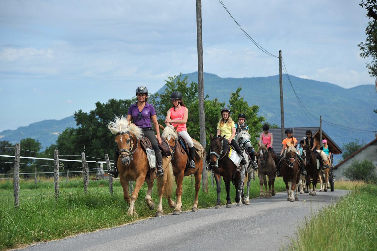 Photographe équestre En Auvergne Rhône Alpes : Reportage équestre Avec Les Cavaliers De L'Ecole D'Equitation De Peillonnex