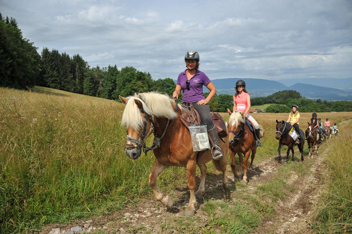 Photographe équestre En Auvergne Rhône Alpes : Séance Photo Avec Les Cavaliers De L'Ecole D' Equitation De Peillonnex