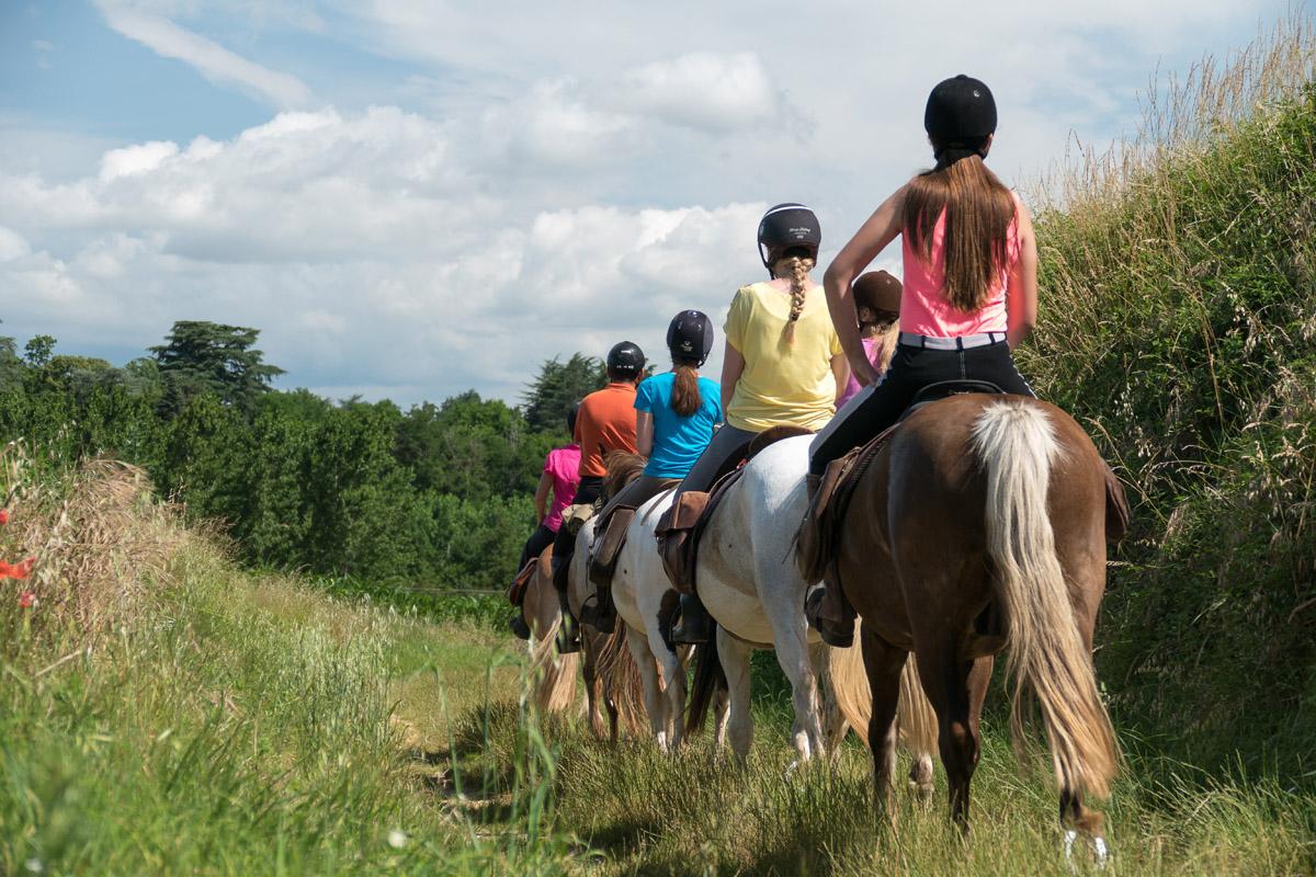 Photographe équestre En Auvergne Rhône Alpes : Reportage Photo équestre Avec Les Cavaliers De La Ferme Équestre Des Collines