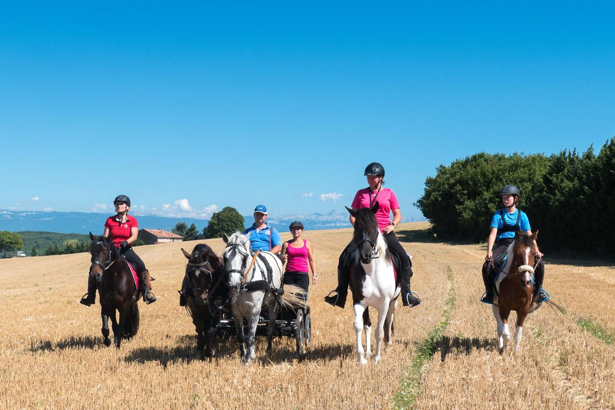 Photographe équestre En Auvergne Rhône Alpes : Les Cavaliers De La Drome A Cheval Font Un Reportage Photo Pour Le CRTE
