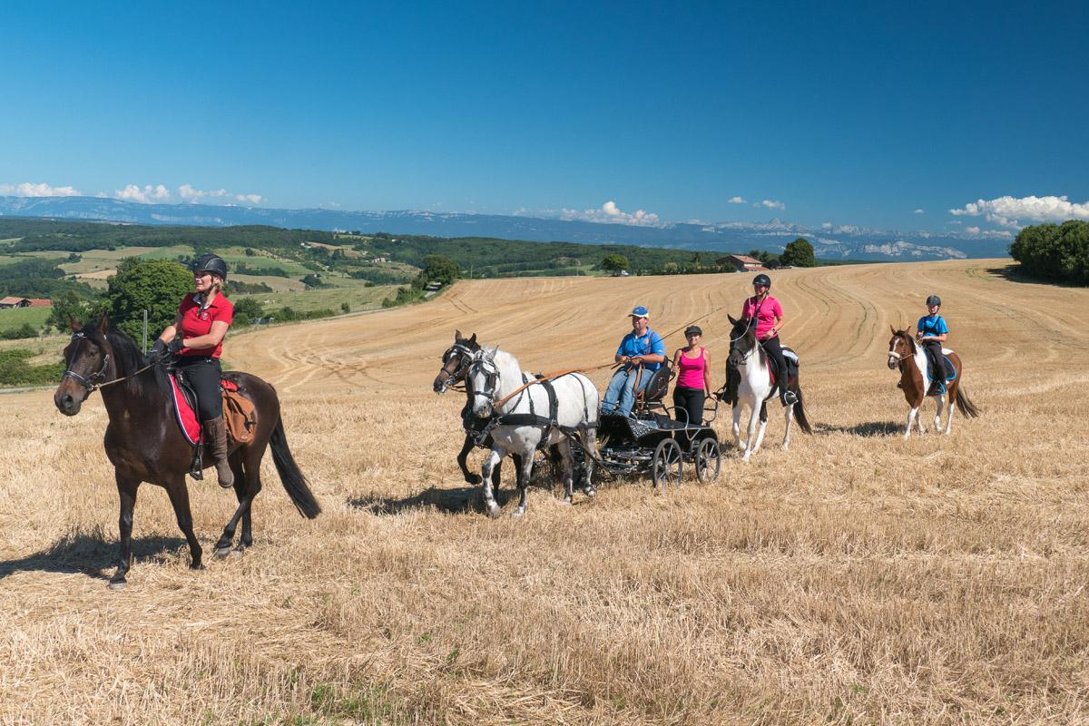 Séance Photo Organisée Par Le Photographe équestre Dans La Drome Des Collines Pour Le CRTE Rhône Alpes Avec Les Cavaliers De La Drome A Cheval