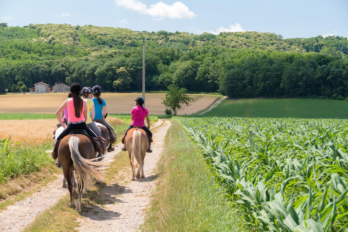 Photographe En Auvergne Rhône Alpes : Reportage Photo équestre En Compagnie Des Cavaliers De La Ferme Équestre Des Collines