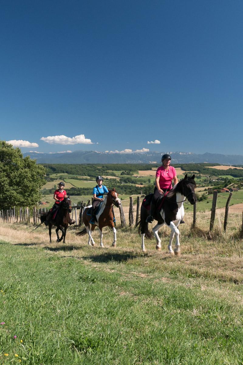 Photographe En Auvergne Rhône Alpes : Photo équestre Dans La Drome Des Collines Pour Le CRTE Rhône Alpes Avec Les Cavaliers De La Drome A Cheval Et Réalisée Par Le Photographe Professionnel