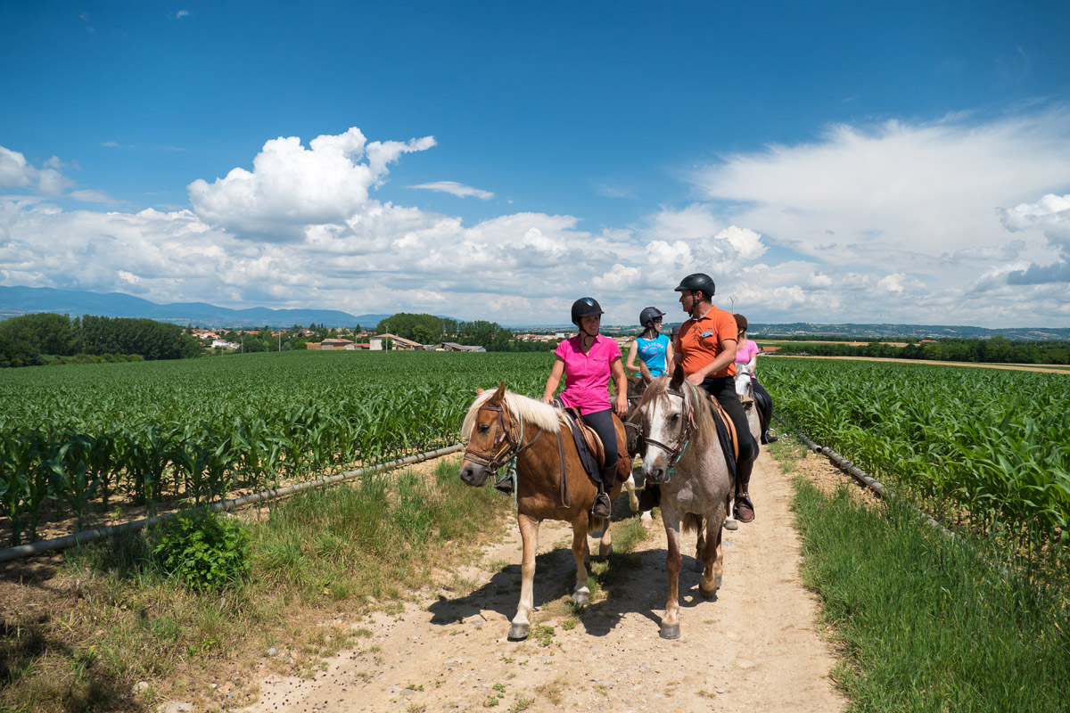 Photographe En Auvergne Rhône Alpes : Reportage équestre En Photo Des Cavaliers De La Ferme Équestre Des Collines
