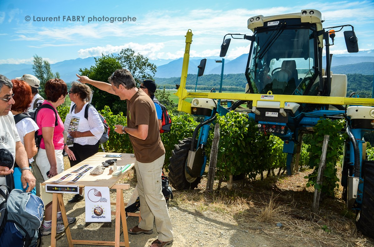 photographe tourisme sur une balade gourmande : explications sur le vignoble de Savoie par un géologue devant une machine à vendanger dans les vignes de Savoie