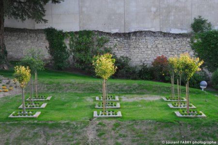 Photographe Architecte Paysagiste : La Plantation D'arbres Face Au Vieuxmur Laissé En état