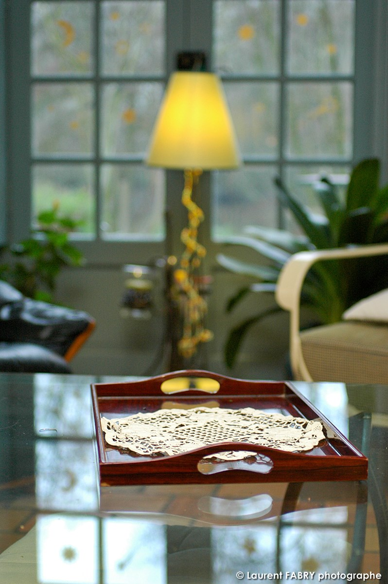 Dans Le Salon De La Maison D'hôtes, La Grande Table Basse En Fer Forgé