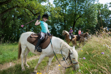 Photographe Professionnel équin à L'Ecole D'Equitation De Peillonnex, Haute Savoie