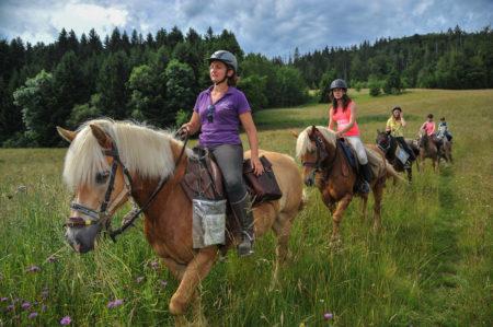 Photographe En Auvergne Rhône Alpes : Reportage Photo équestre Des Cavaliers De L'Ecole D'Equitation De Peillonnex