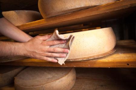 Photographe Frottage Du Fromage Dans Les Caves D'Affinage De Savoie, Rognaix