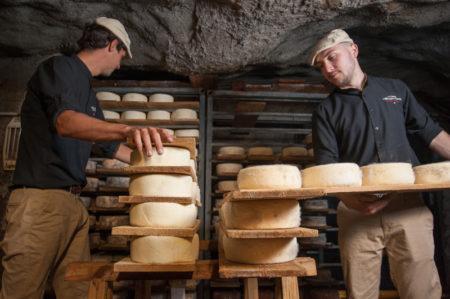 Travail Sur Des Tommes Fraîches Dans Les Caves D'Affinage De Savoie, Rognaix
