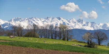 Photographe En Décoration De Bureaux Dans Les Alpes : Le Massif De Belledonne Depuis Challes-les-Eaux