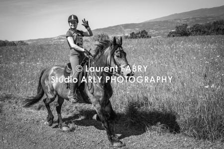 Photographe équitation En Noir Et Blanc