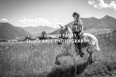 Photographe équestre En Noir Et Blanc